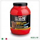 GYMLINE MUSCLE 100 % WHEY PROTEIN CONCENTRATE  gusto cacao